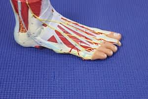 Twisted Ankle First Aid Care: Causes & Best Treatment 2020!