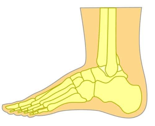 Top of the foot pain lateral view