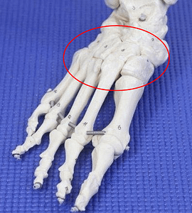 Sprained midfoot healing time lisfranc joint