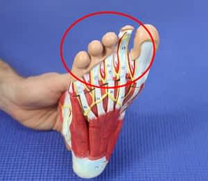 Middle Toe Pain: Causes, Symptoms & Best Home Treatment